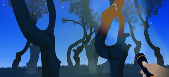 Mercredis 15, 29 juillet et 19 août / VISITE NOCTURNE Famille / La Pinatelle du Zouave